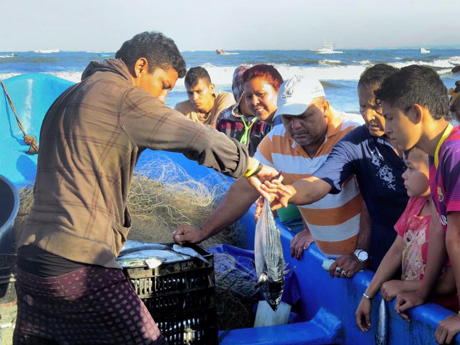 vente poisson bateau