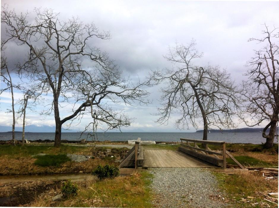 shoreline footbridge